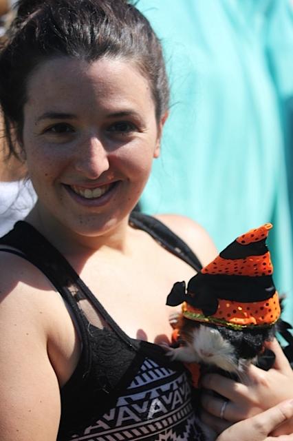 Guinea Pig Dressed in a hat |SugaredandIced.com